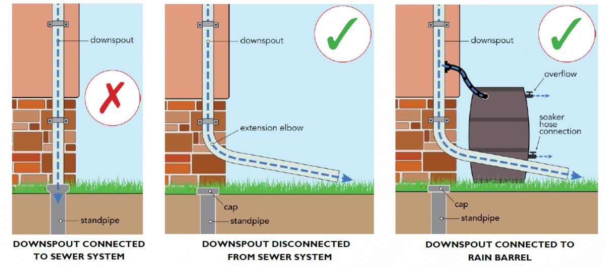 Downspout Disconnection Program Dcwater