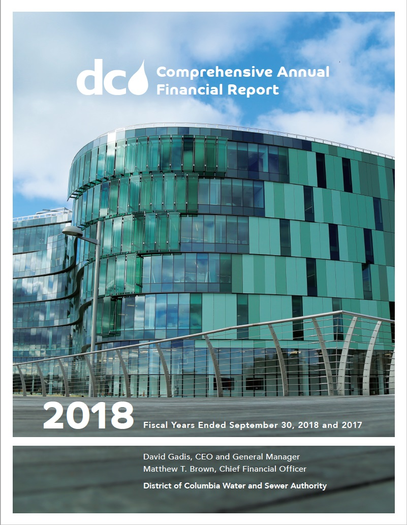 FY 2017 Comprehensive Annual Financial Report