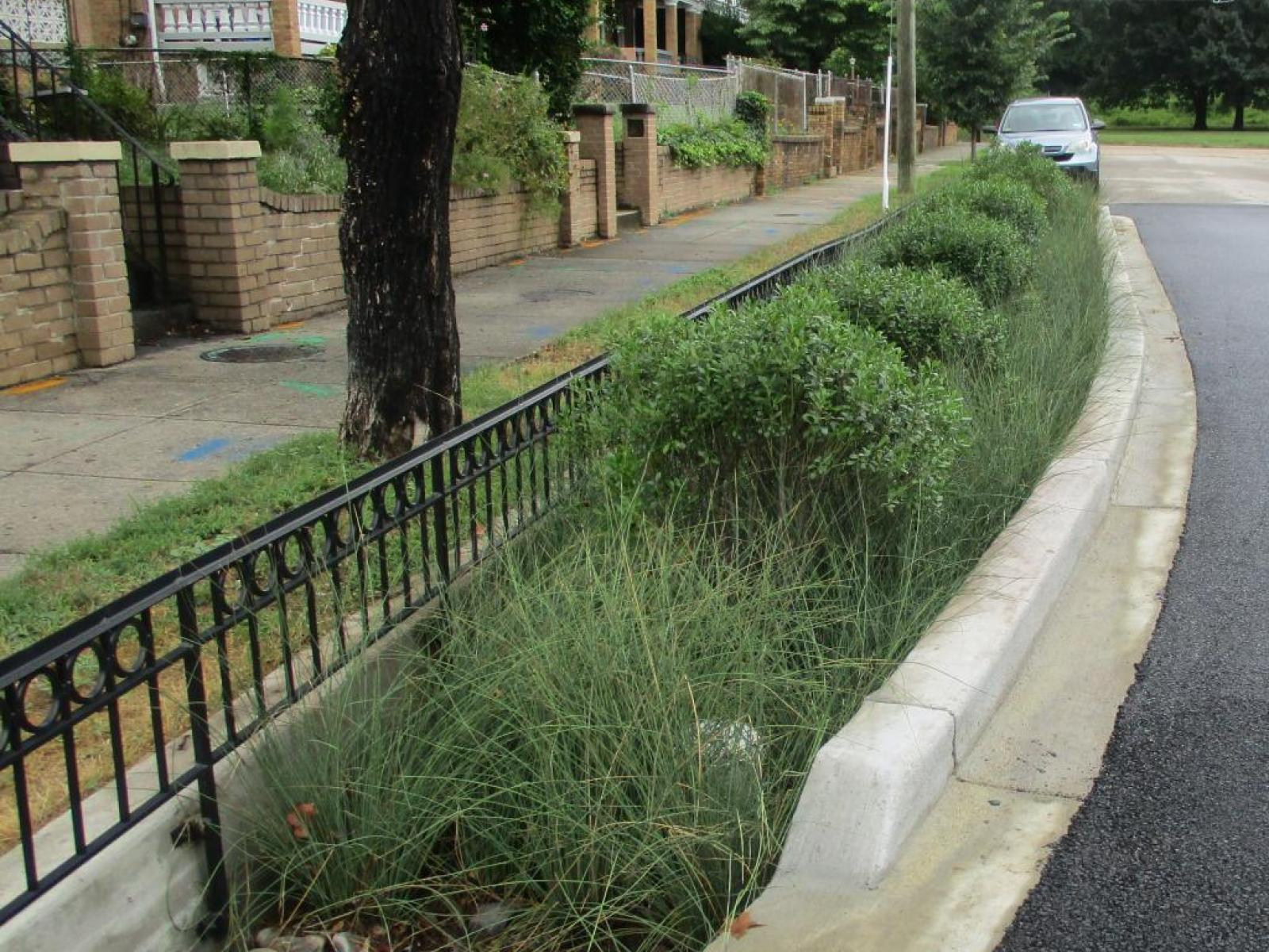 Photo of a green infrastructure installation