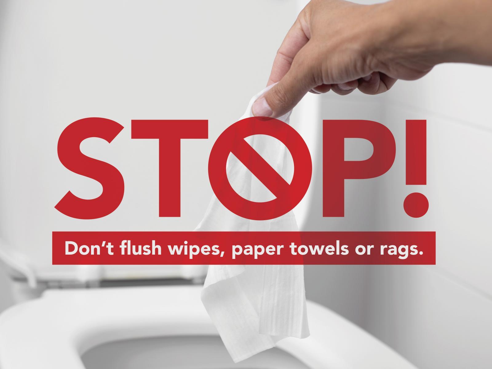 Don't flush wipes image